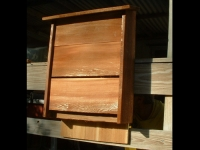 Large Cedar Bat House