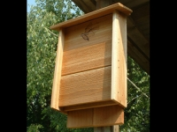 Medium Cedar Bat House
