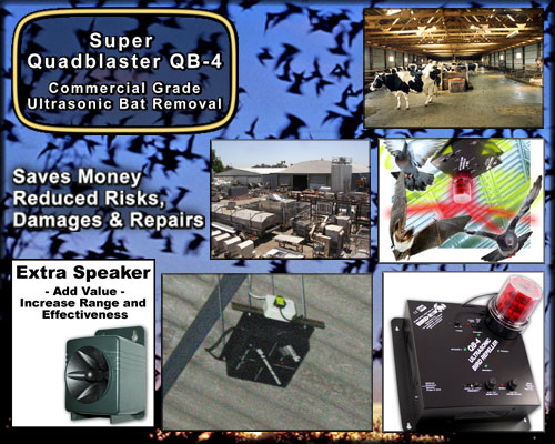 Commercial Bat Removal Super Quad Blaster QB-4