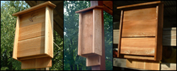 Bat Houses - Natural Insect Control